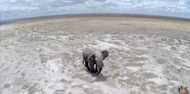 Kenya like never seen before! (drone footage)